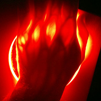 red light through hand