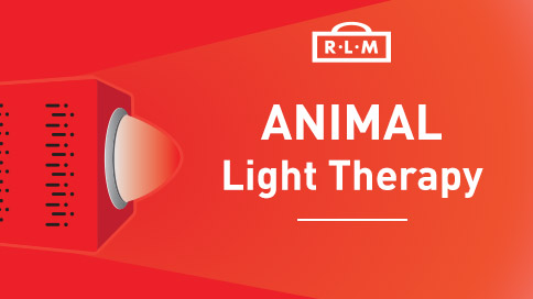 light therapy for animals - dogs cats horses etc