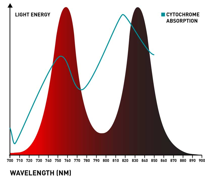 infrared light device spectrum