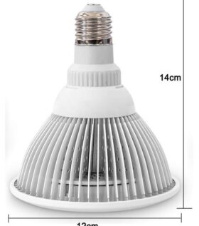 dimensions of infrared mini light