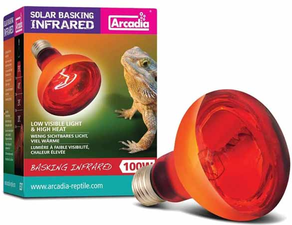 infrared bulb for reptile pets